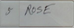 Featherly_0009_5 Rose