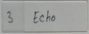 Featherly_0011_3 Echo