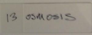 dinger__0001_13 osmosis
