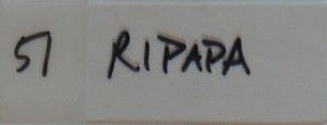 featherly__0002_51 ripapa